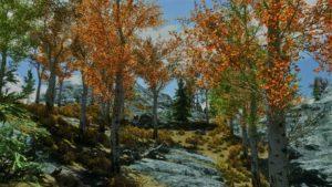 мод густые деревья скайрим